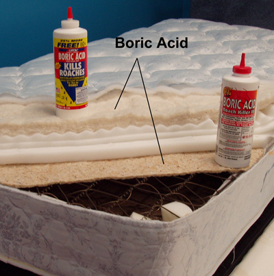 Boric Acid Risks